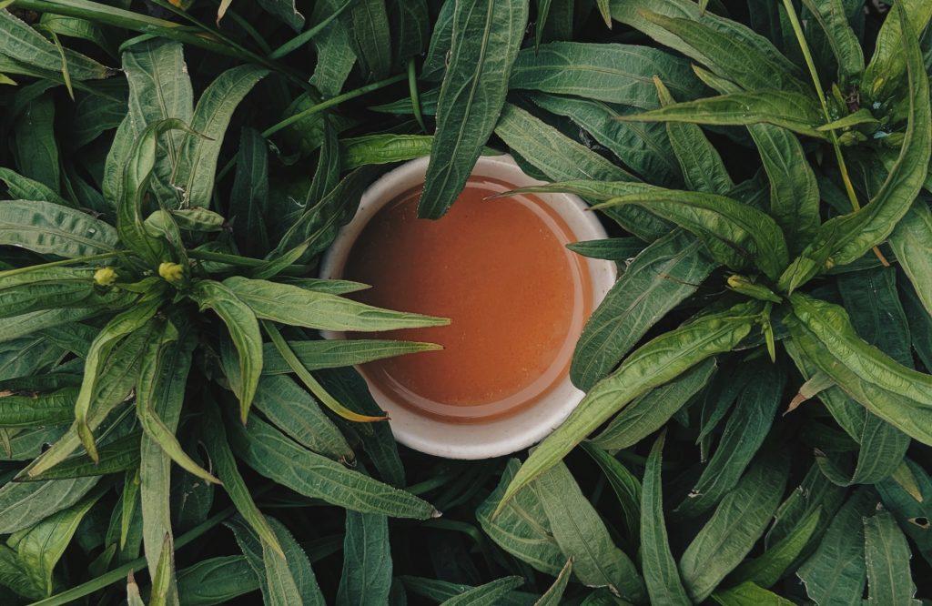 Koffein kommt auch in den Teepflanze vor