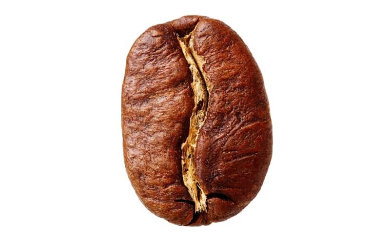 Kaffeebohne Arabica
