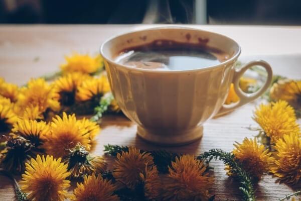 Loewenzahnkaffee