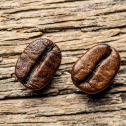 Robusta und Arabica Kaffeebohne nebeneinander