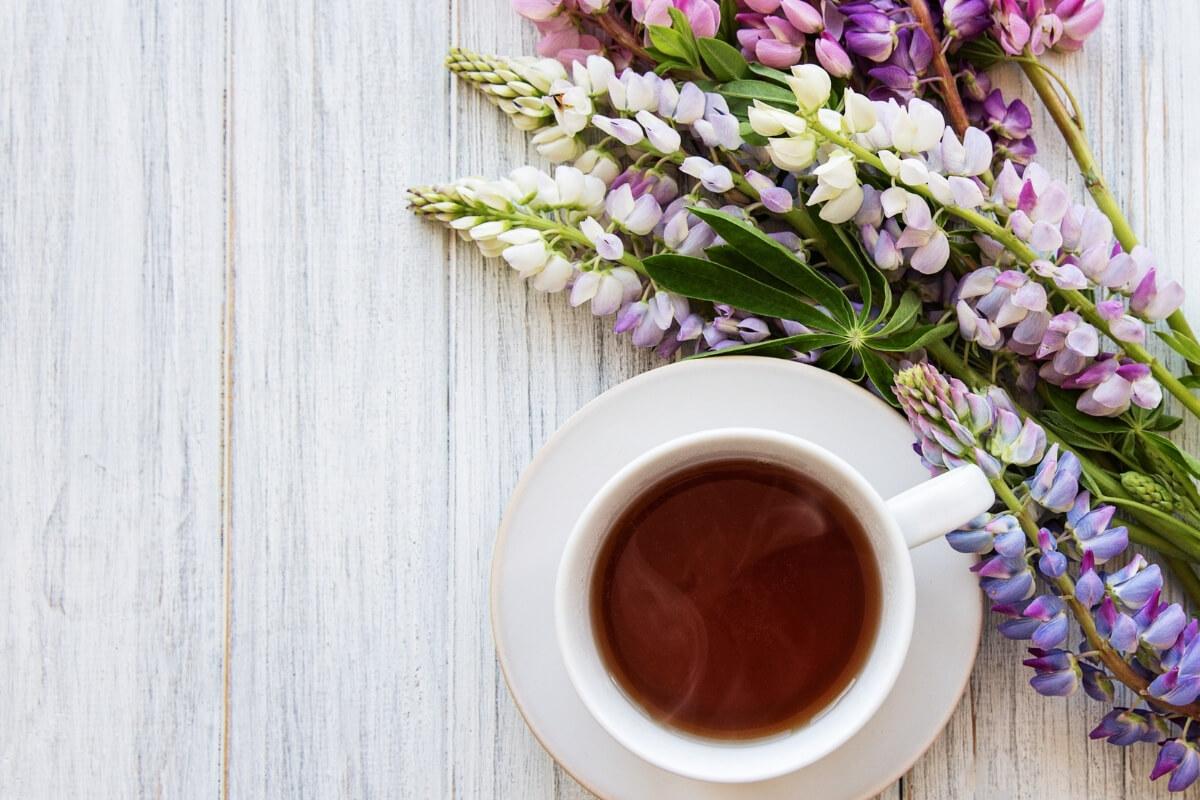 Lupinenkaffee in einer Tasse mit Lupinen daneben